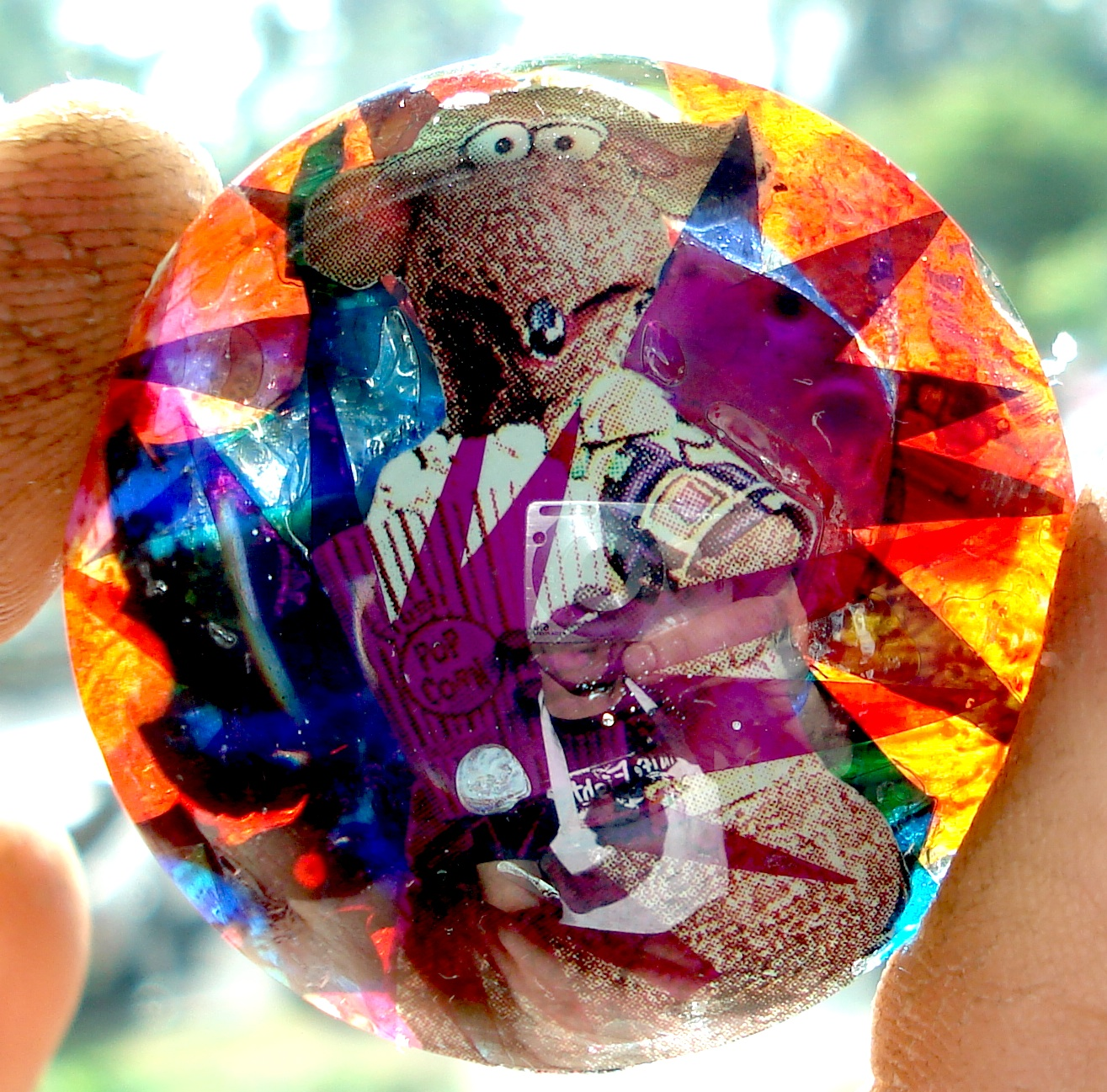 Studly Doowinkle   Collage on a lens